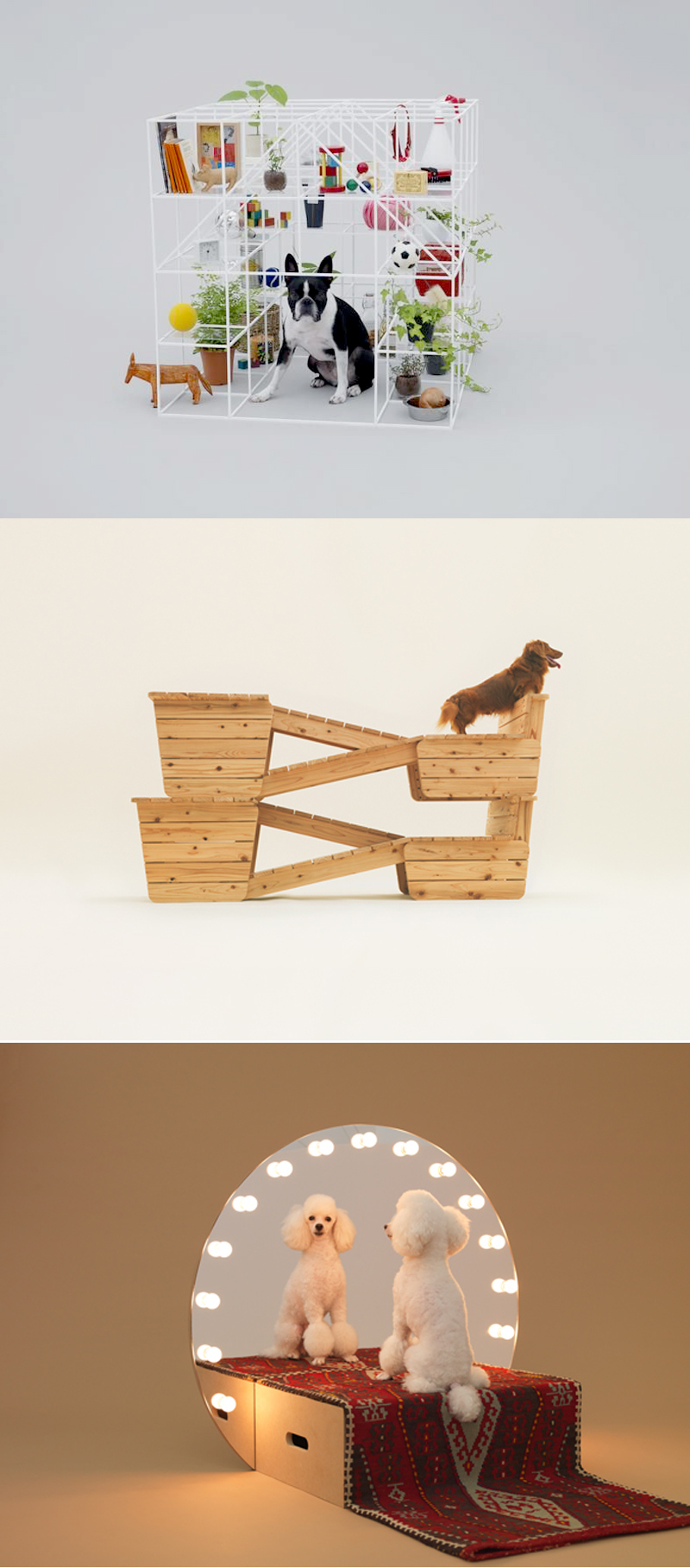 6} Sou Fujimoto/ Boston Terrier 7} Atelier Bow-Wow/ Long bodied short legged dog 8} Konstantin Grcic/ Toy Poodle